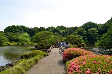 Japanese landscape garden.