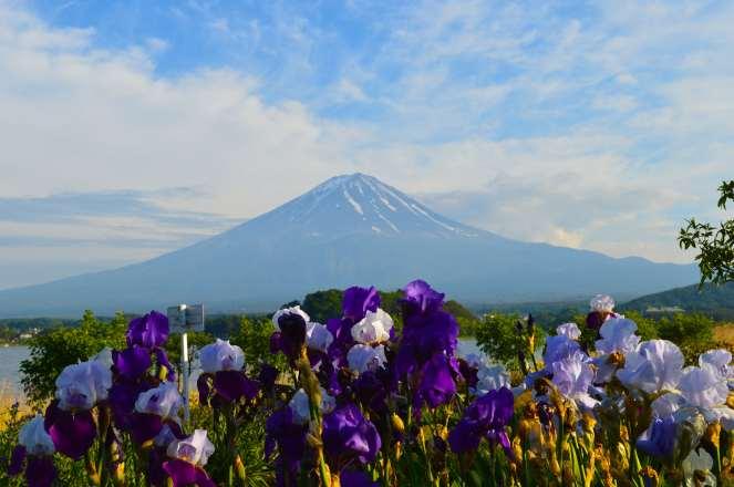 The striking flora surrounding the mountain make an impressive stage.